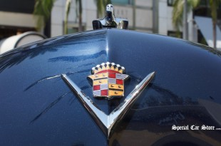 Rodeo Drive Concours Art